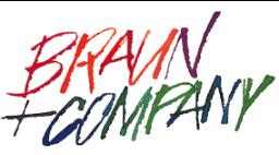 Braun Company Logo